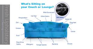 Adelaide Upholstery Cleaning Upholstery Cleaning Melton 0420230164 Couch Cleaning