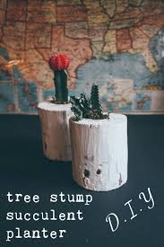 tree stump planters make this tree stump succulent planter hello scarlett blog