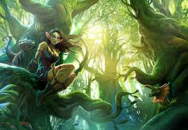 pictures with elves fantasy elf barbaras fantasy world