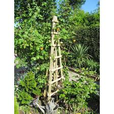 garden obelisk trellis ideas u2013 outdoor decorations