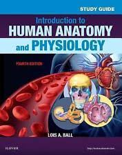 Study Guide Anatomy And Physiology 1 Study Guide For Introduction To Human Anatomy And Physiology By