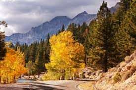nevada county fall colors