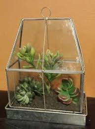 how to diy terrarium greenhouse diy pinterest diy