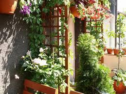 pergola balkon taras balkon atrakcja balkon dobry pomysł drzewa kratka