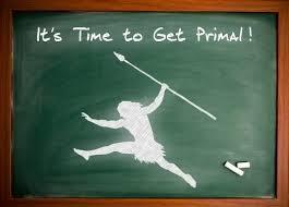 primal blueprint a visual guideline primal g r i t s