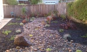Drought Friendly Landscaping by Blog Turiace Landscaping