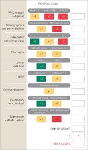 risk assessment in pulmonary arterial hypertension european
