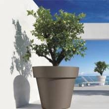 vasi in plastica da esterno vasi in plastica vasi di design fioriere di design arredo