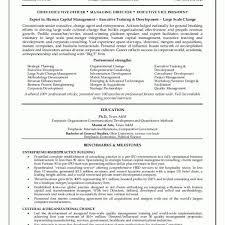sample resume executive vice president sample resumes ceo resume executive resume executive resume