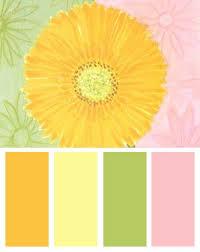 Yellow Color Combinations 271 Best Color Inspiration Images On Pinterest Colors Colour