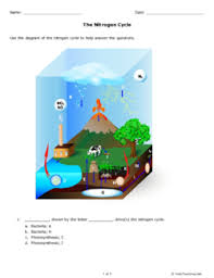 the nitrogen cycle grade 10 free printable tests and