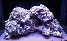 Aquascaping Rocks The Pros And Cons Of Aquascaping Marine Aquariums With Dry Rock