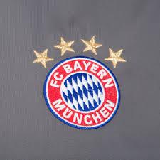 Paraguayan Flag Sales Herren Adidas Performance Fc Bayern München