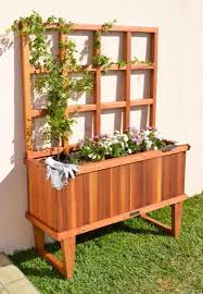 flower box of climbing lattice plant u2013 which plants for the