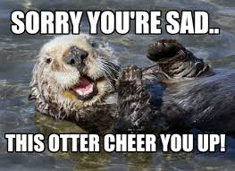 Sea Otter Meme - meme creator otter meme generator at memecreator org