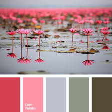Pink And Grey Color Scheme Bright Pink Color Of Marsh Color Solution For House Dark Green
