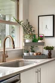 Delta Bronze Kitchen Faucet by Gold Kitchen Faucet The Prettiest Kitchen Faucet You Ever Did See