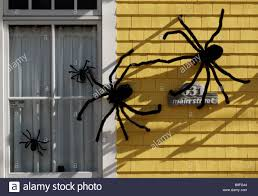 giant spider on house halloween picture suggestion for giant