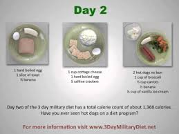 what is the 3 day military diet youtube