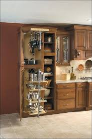 roll out kitchen cabinet kitchen cabinet inserts pizzle me
