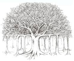 banyan tree sketch crafts pinterest tree sketches sketches