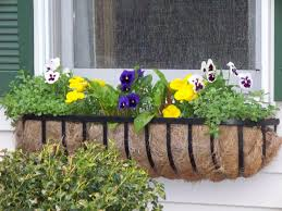 Wooden Window Flower Boxes - window box planters wood plans u2014 the homy design