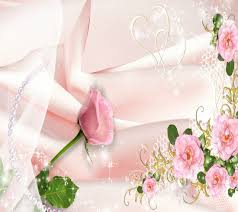 pink roses on silk android central