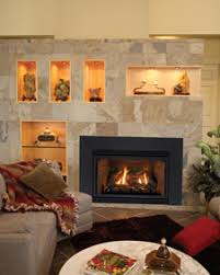 Direct Vent Fireplace Insert by Empire White Mountain Hearth Direct Vent Fireplaces