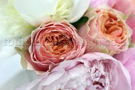 cheap same day flower delivery new peony bouquets from flowers24hours flower delivery shop