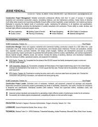 Manager Experience Resume Project Management Cv Examples Project Manager Resume Cover Letter