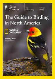 ttc video the national geographic guide to birding in north