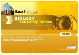 Cuny Anatomy And Physiology Baruch U0027s Biology Lab Safety Tutorial