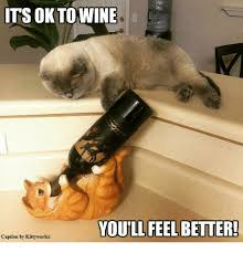 Feel Better Meme - its ok to wine youll feel better caption by kittyworks meme on me me