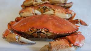 dungeness crab goes on sale after months long delay abc7news com