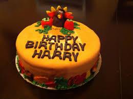happy birthday harry backyard galah cam