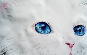 how to paint a cat with watercolor youtube