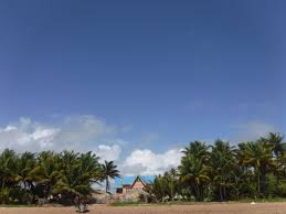 file a rental beach house on the shore of mayaro beach trinidad