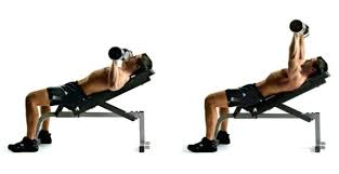 Incline Bench Dumbbell Rows Incline Dumbbell Flyes Vs Incline Bench Press Incline Bench Press