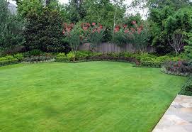Landscaping Ideas For Privacy Landscape Ideas For Privacy Home Design U0026 Architecture Cilif Com