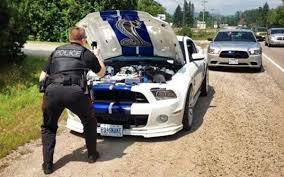 mobile bay mustang ford mustang shelby gt 500 pulled officer photographs