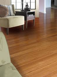 Best Underlayment For Floating Bamboo Flooring by Ecofusion Solid Strand Woven Bamboo Flooring