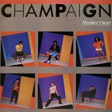 modern photo album modern heart chaign album