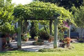 Backyard Arbor Ideas 40 Pergola Design Ideas Turn Your Garden Into A Peaceful Refuge