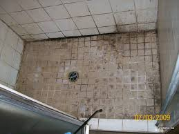 Cleaning Grout In Shower Stone Tile U0026 Grout Fintastic Services U2013 Friendly And
