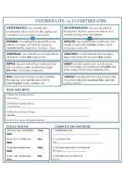 free printable worksheets vertebrates invertebrates vertebrate and invertebrate worksheets worksheets for all download
