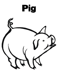 free printable pig coloring pages kids pig images