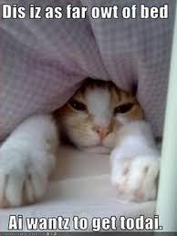 I Love My Bed Meme - the dutchess iiiiiiiiits monday