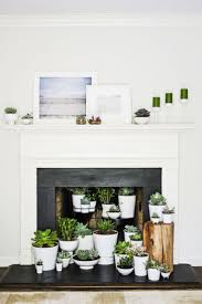 11 best fireplace images on pinterest unused fireplace
