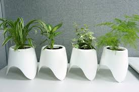 self watering planters from duqaa handicrafts b2b marketplace