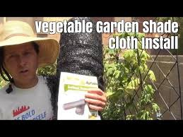 garden shade cloth install to protect vegetables from heat youtube